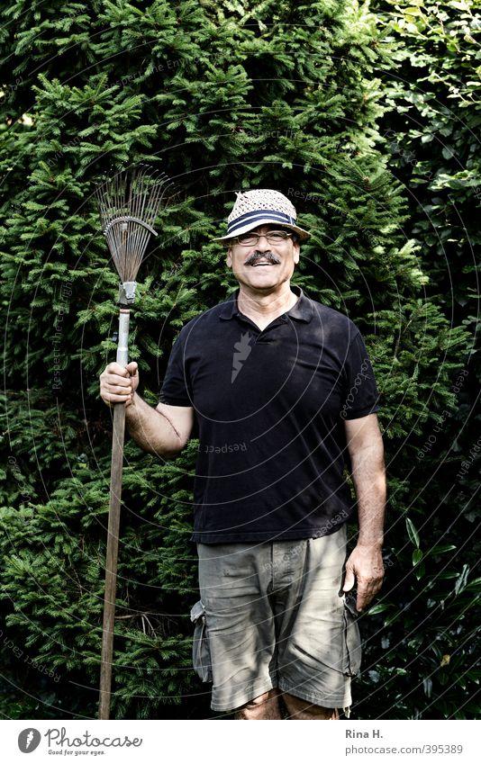Zeig mal was 'ne Harke ist Gartenarbeit Mann Erwachsene 1 Mensch 60 und älter Senior Natur Sommer Schönes Wetter Baum Tanne Hemd Shorts Hut Bart Oberlippenbart