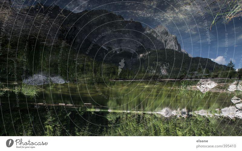 Eibsee Umwelt Natur Landschaft Wasser Himmel Sommer Schönes Wetter Sträucher Alpen Berge u. Gebirge Zugspitze Seeufer Teich wandern Farbfoto Außenaufnahme