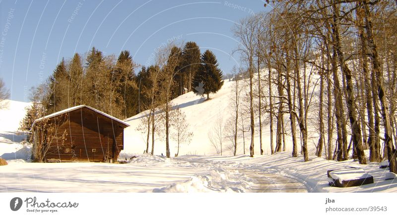 Scheune bei Bächlein Baum Sonne Haus Bach Scheune