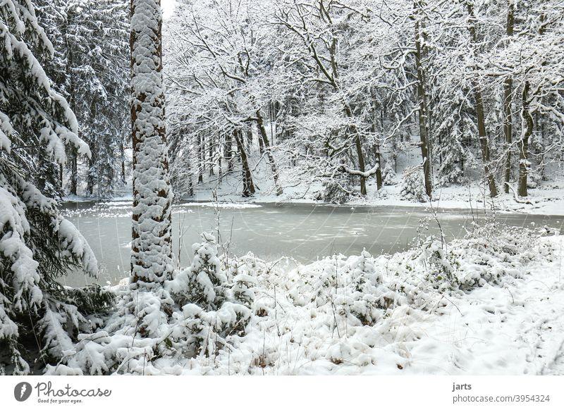 Idyllischer Waldweiher im Winter Idylle Weiher zugefroren Schnee kalt Eis Spessart Frost Natur Baum Außenaufnahme weiß Menschenleer Landschaft ruhig Einsamkeit