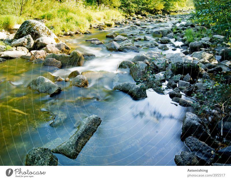 steinig Umwelt Natur Landschaft Pflanze Wasser Sommer Wetter Schönes Wetter Wärme Baum Gras Sträucher Blatt Felsen Wellen Flussufer Bach Wasserfall Stein kalt
