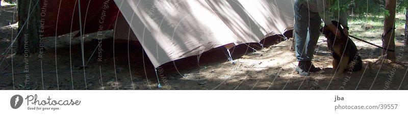 du bleibst hier! Hund Mann Zelt Wald Waldlichtung Zeltlager Beine warten Bodenbelag Jungschar Außenaufnahme