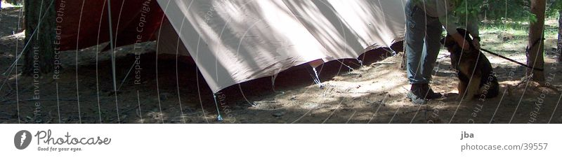 du bleibst hier! Mann Wald Hund Beine warten Bodenbelag Zelt Waldlichtung Schutz Zeltlager