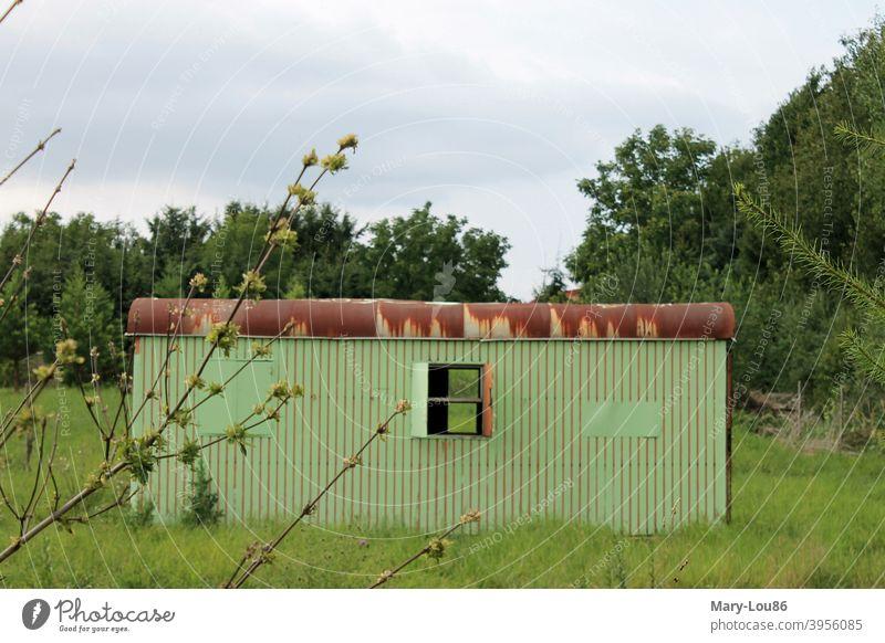 Grüner Wohnwagen auf Wiese Container Baum Natur Draußen Außenaufnahme außergewöhnlich Rost Fenster verlassen verfallen Einsamkeit einsam Menschenleer Himmel Tag