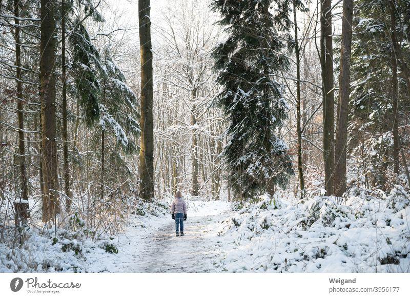 Kind im Winterwald Mädchen Wald Schnee kalt Spaziergang wandern erkunden Kindheit Frost allein Winterurlaub Winterstimmung Klima Wintertag Außenaufnahme Wetter