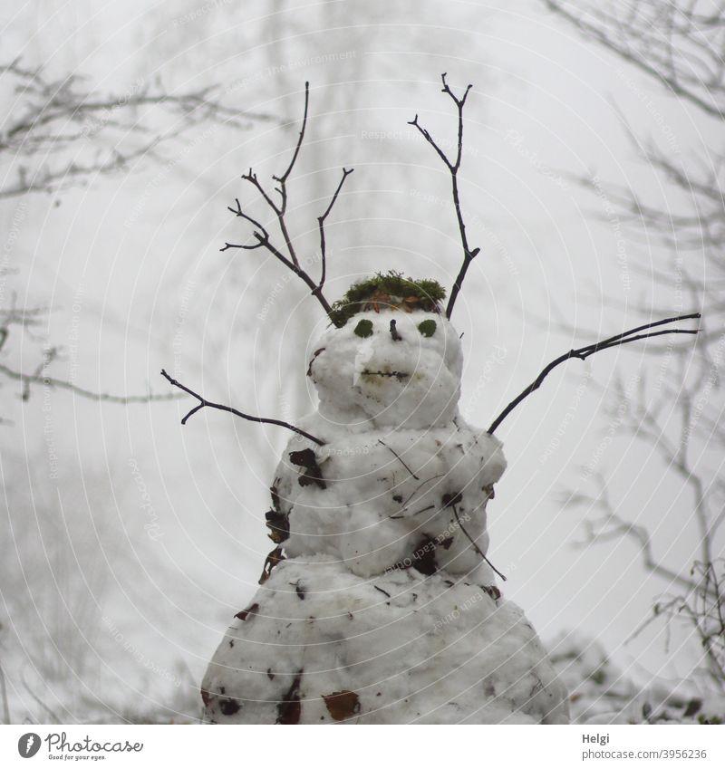 Schneemann steht im nebeligen Winterwald Nebel kalt weiß Außenaufnahme Freude Jahreszeiten Natur Frost Kindheit Zweig Wald Januar Winterwetter Kälte schwarz