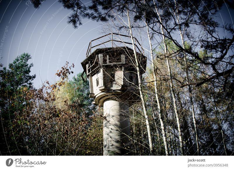 Ein Wachturm steht im Walde Ganz still und stumm Baum Natur lost places Herbst Verfall Architektur Vergangenheit Ruine historisch verfallen verdeckt versteckt