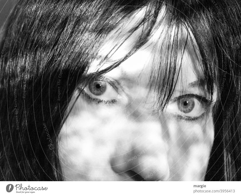 Gesicht einer Frau,  Augen, Nase, Haare Porträt Mensch feminin Blick Blick in die Kamera Erwachsene Wange face Licht Kopf Tag dunkelhaarig Portrait schön