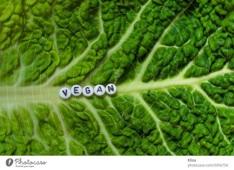 Ein Salatblatt auf dem das Wort Vegan steht Vegane Ernährung grün gesund Veganismus geschrieben Gesunde Ernährung Lebensmittel Gemüse Wirsing ökologisch
