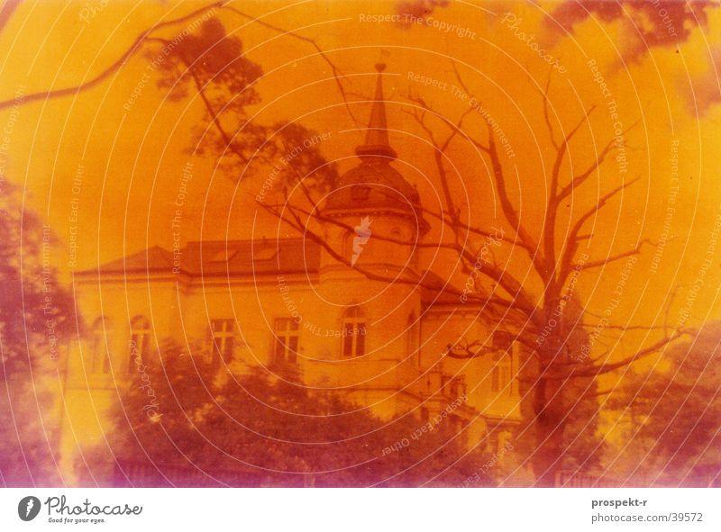 Yellow again Baum Haus gelb Straße Architektur Turm Dresden Allee Villa Fehlfarbe