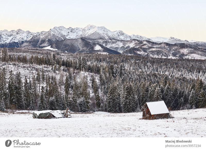 Malerische Berglandschaft im Winter, Tatra-Gebirge, Polen. Berge u. Gebirge Landschaft schön Schnee Himmel Wartehäuschen Hütte Cottage malerisch Ansicht Foto