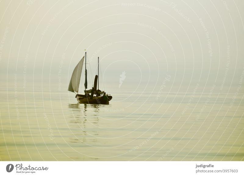 Windstill, Segelboot auf der Ostsee Wasser Segeln Meer Ferien & Urlaub & Reisen Segelschiff Bootsfahrt Freiheit Sommer Wassersport Windstille Flaute Licht weich