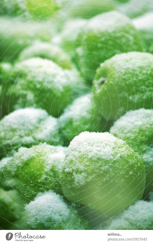Obstsalat mit ganzen Früchten Äpfel Schnee verschneit zugeschneit Golden Delicious kalt Winter Obststand grün