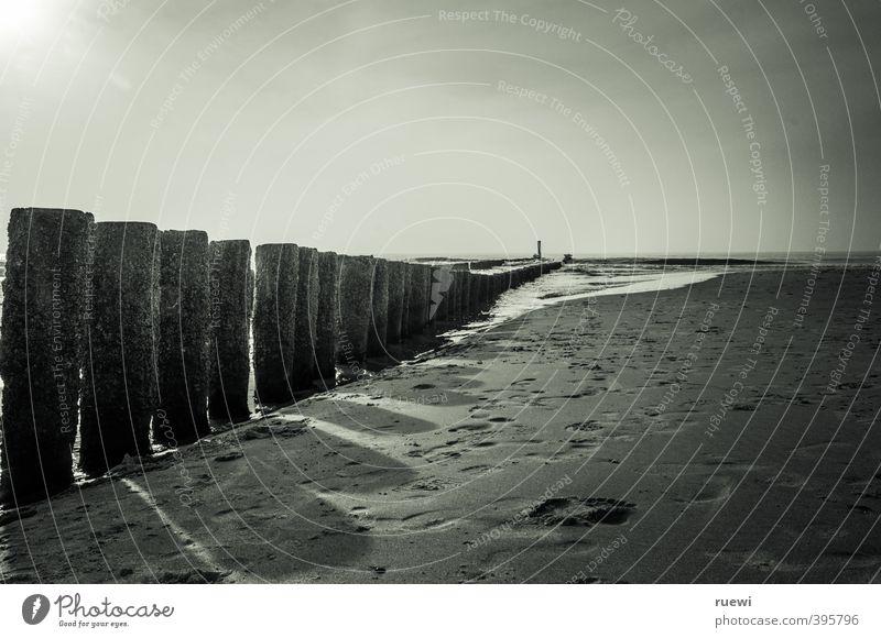 Und noch 'ne Buhne Himmel Ferien & Urlaub & Reisen alt Wasser weiß Sommer Sonne Meer Strand schwarz Frühling Küste Architektur Holz Sand Luft