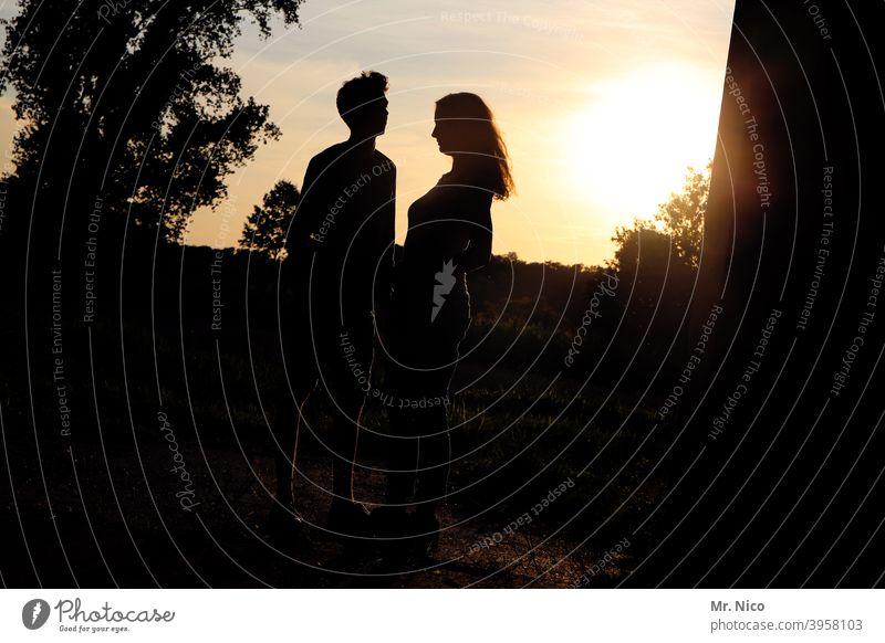 romantischer Sommerabend zu zweit Paar Umwelt Natur Glück gold gelb Sympathie Freundschaft Verliebtheit Liebe Zusammensein Romantik Silhouette Schatten