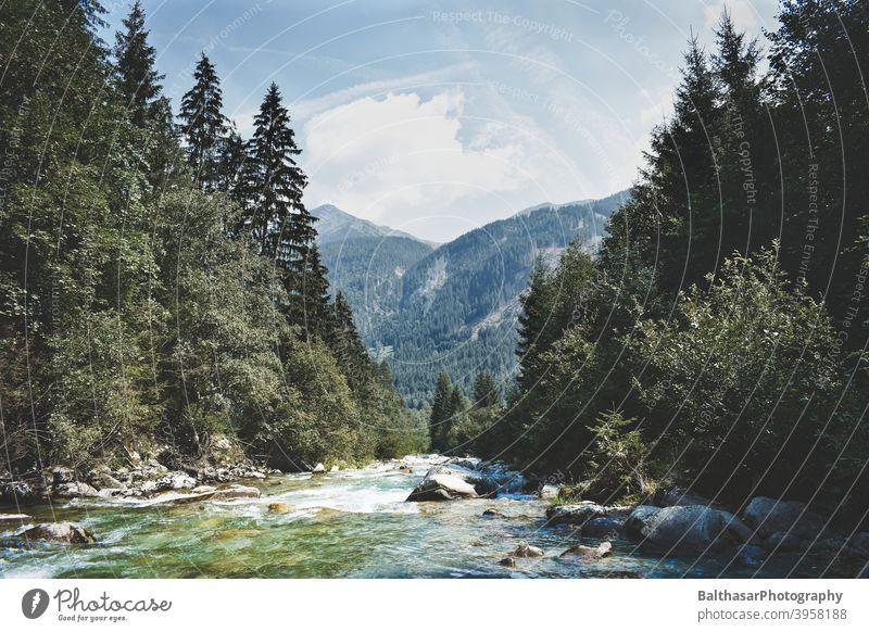 Berglandschaft - Fluss - Österreich Berge u. Gebirge Steine Wald Nadelbaum Wasser aktuell Himmel Wolken Horizont dunkelgrün Natur Umwelt malerisch Sommer