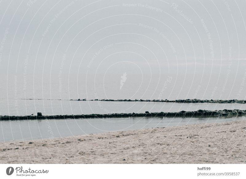 Winter am Meer - die Menschen sind zu Hause Sand Strand Nordsee Küste Nationalpark Seeufer Wattenmeer Wattwandern Insel Freude Erholung Landzunge Lebensfreude