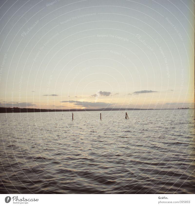 Wenn die Sonne im Meer versinkt Wasser Sonnenaufgang Sonnenuntergang Sommer Schönes Wetter See Steinhuder Meer groß Kitsch natürlich blau Romantik ruhig Idylle