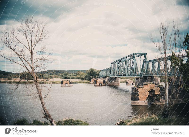 Abgestorben | Alte Europabrücke an der Oder | Bald jedoch wieder nutzbar als Rad- und Wanderweg | Verbindung Deutschland - Polen Brücke Oderbruch