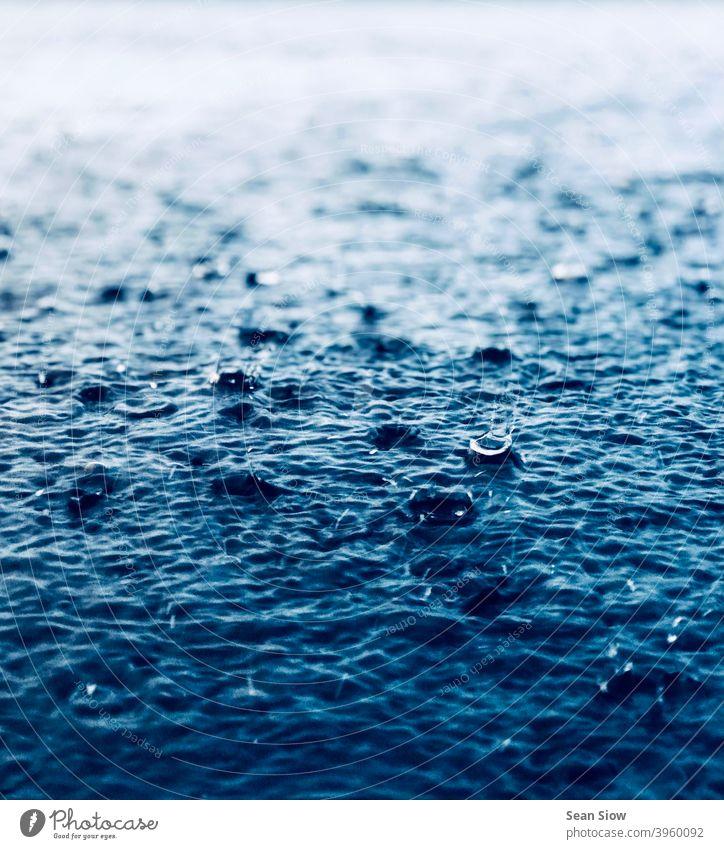 Starker Regen prasselt auf den Boden nass kalt Wasser regnerisches Wetter Umwelt Wassertropfen trist Tag deprimierend depressiv schlechtes Wetter Regentropfen