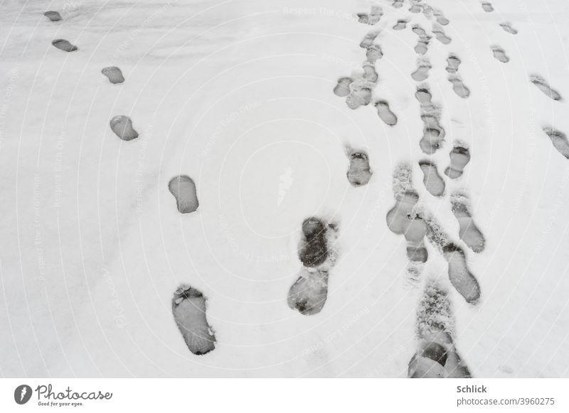Fußspuren im Schnee einer geht einen anderen Weg anders abbiegen eigenwillig eigener weg Einzelgänger Spuren Winter anders sein eigene Wege gehen Wege & Pfade
