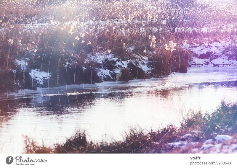 Winterspuren im Nachmittagslicht kleiner Fluss Flussufer Bach Bachufer heimisch Wasser fließen Blendenfleck Lichtspiegelung besonderes Licht