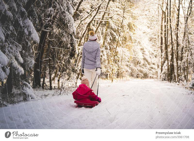 Mutter, die ihr Baby auf einem Schlitten durch den Winterwald zieht. Hintergrund offen Wald Familie authentisch ziehend Kind Person Mädchen Freizeit Natur