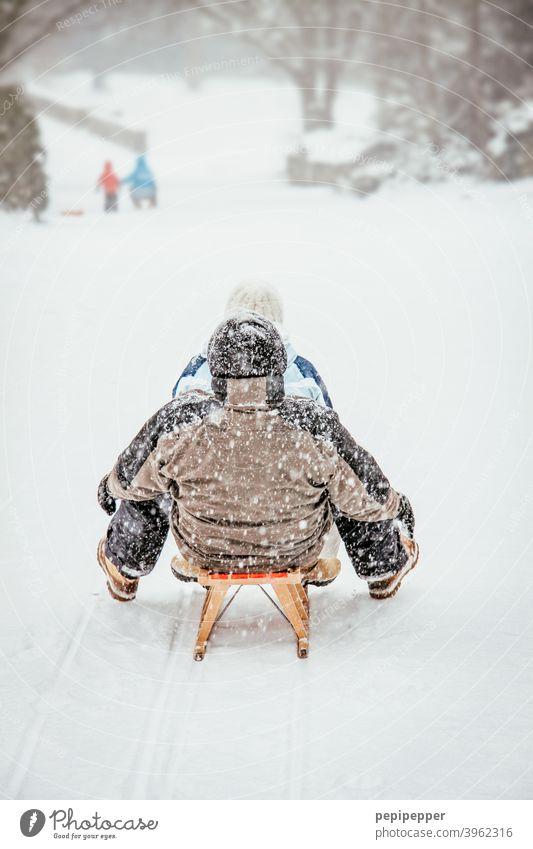 Schlittenfahrt im Winter Winterurlaub Winterstimmung Wintertag winterlich Schnee Winterwald Frost Kälte Dezember Schneelandschaft Landschaft kalt frieren