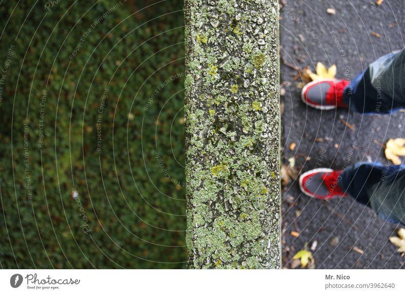 Sackgasse Mauer Wand Stein Grenze Schuhe Beine stehen Wiese Rasen Gras Fuß grün Hose laub Hindernis abgrund tiefergelegt Moos moosbedeckt Vogelperspektive Boden