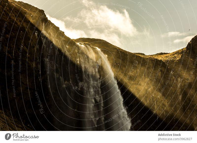 Majestätischer Wasserfall in bergigem Tal Berge u. Gebirge Kraft fließen Hochland Landschaft erstaunlich strömen Island sonnig Gelände atemberaubend prunkvoll