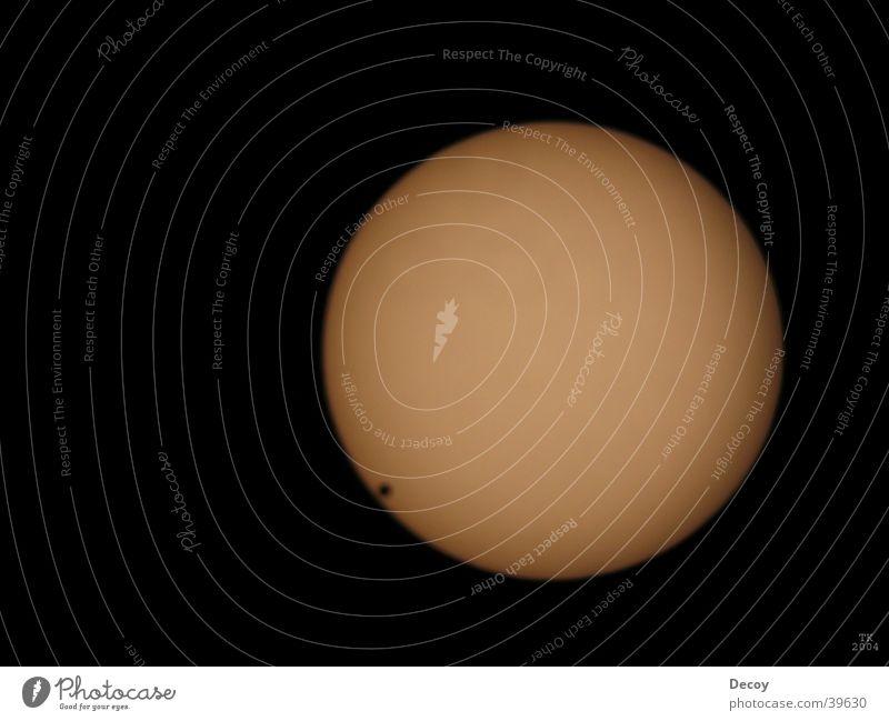 Venuspassion Sonne Wissenschaften Leidenschaft Teleskop Sonnenfleck