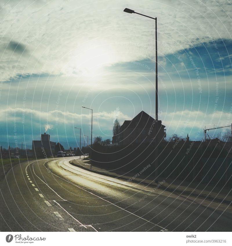 Winternachmittag Straße Verkehrswege Kurve Horizont Schönes Wetter Baum dunkel leuchten Richtung Farbfoto Gedeckte Farben Außenaufnahme Menschenleer