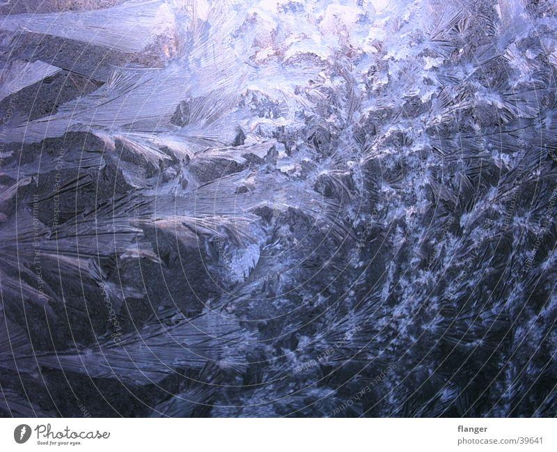 Eisblumen blau Winter kalt Fenster Eis Frost