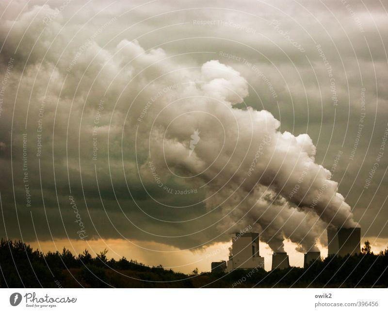 Apokalypse Himmel Natur Wolken dunkel Umwelt Deutschland Business Horizont Energiewirtschaft Sträucher Technik & Technologie gruselig Stress Umweltschutz