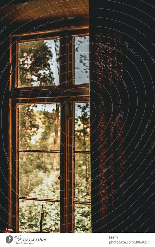 Ein Blick aus dem Zimmer durch das verschlossene und halb mit der Gardine zugezogene Fenster nach außen in eine andere, helle, geheimnisvolle und fröhliche Welt