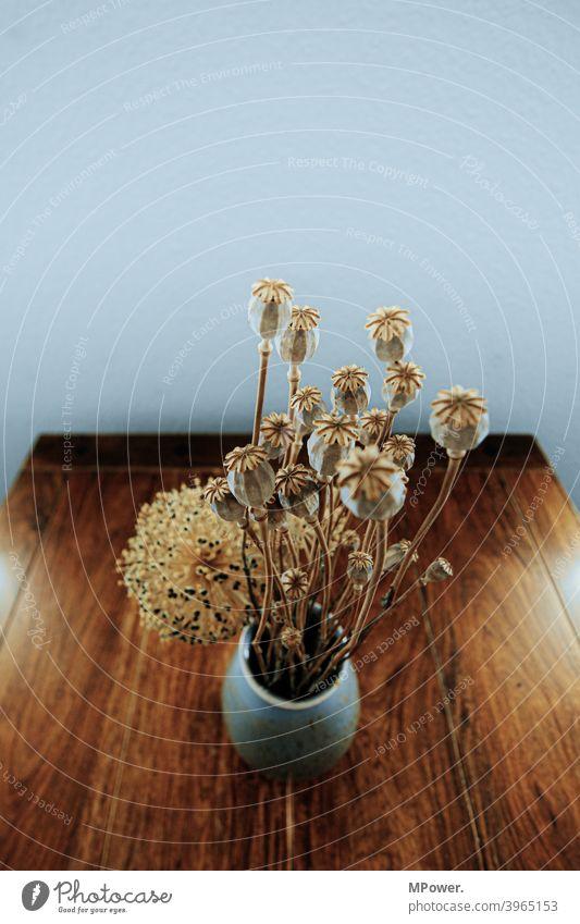 mohnstrauß Mohn Strauß Trockenblume Tisch Vase Blumenstrauß Innenaufnahme Mohnkapsel braun