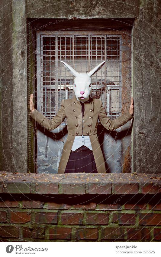The dark rabbit (2) Mensch feminin Junge Frau Jugendliche 1 18-30 Jahre Erwachsene Kunst Haus Bauwerk Mauer Wand Fassade Tür außergewöhnlich bedrohlich gruselig
