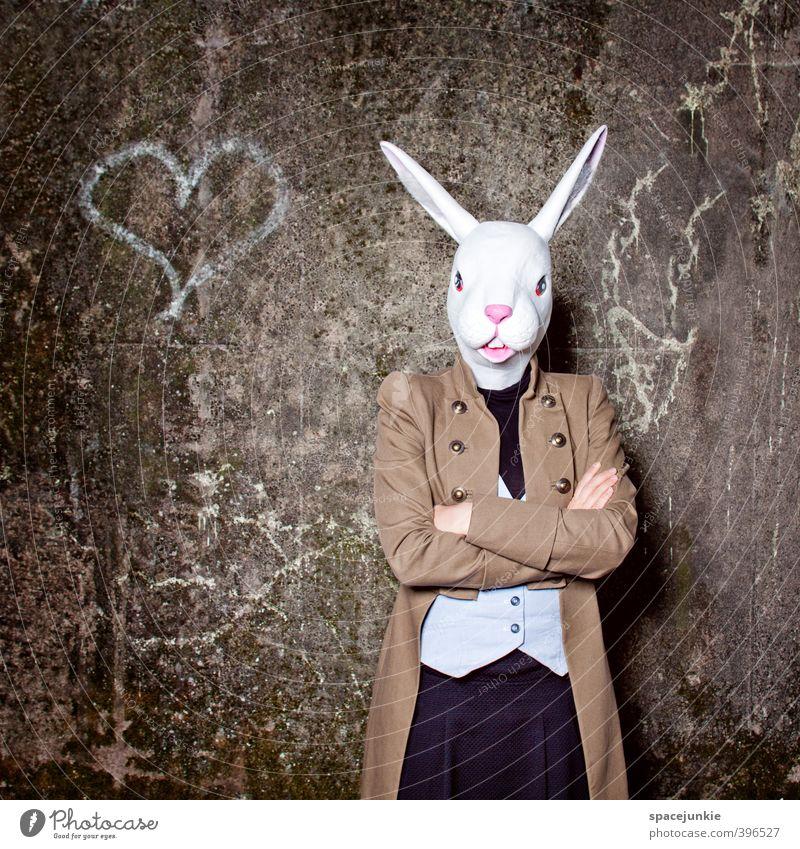 The lovely rabbit Mensch feminin Junge Frau Jugendliche Erwachsene 1 18-30 Jahre Künstler Ruine Mauer Wand Fassade Tier Wildtier außergewöhnlich gruselig