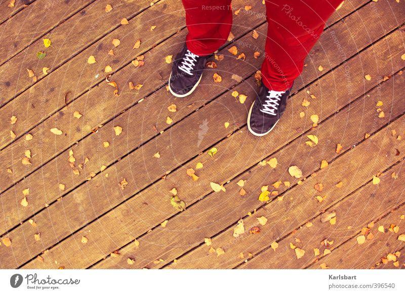 im Herbst stehen. Mensch Natur Jugendliche Blatt Leben Wege & Pfade Holz Stil Garten Mode Fuß gehen Linie Schuhe Häusliches Leben