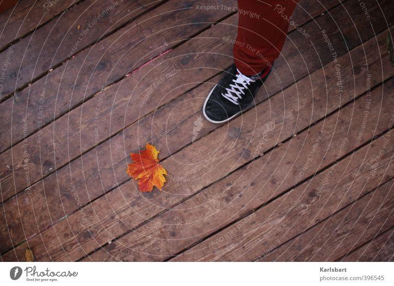 Schritt in den Herbst. Fuß 1 Mensch Natur Blatt Balkon Terrasse Bodenbelag Hose Schuhe Turnschuh Holz Linie Streifen gehen stehen wandern Beginn