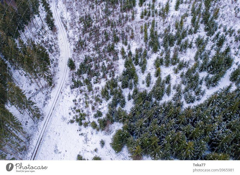 #Winterwald von Oben winter waldweg winterwaldweg schnee eis kalt wald von oben luftaufnahme