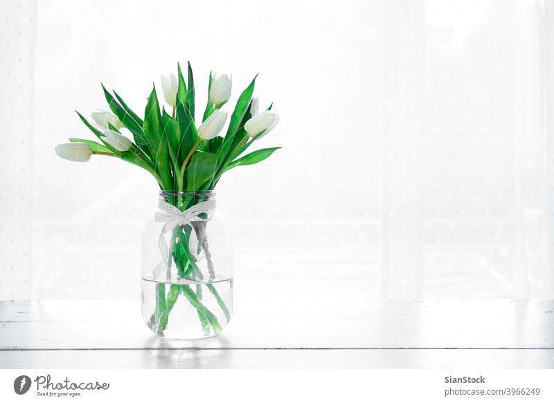 Blumenstrauß aus weißen Tulpen in einer Vase vereinzelt Hintergrund Tag Fenster Tisch Frühling Natur grün schön Mütter Raum Haufen Schönheit Geschenk geblümt