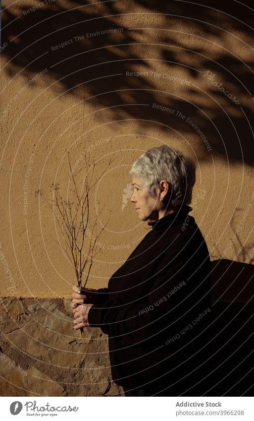 Seitenansicht einer entspannten älteren Frau Senior Kaukasier Europäer Lifestyle Porträt Menschen entspannend in den Ruhestand getreten Gelassenheit weiße Haare