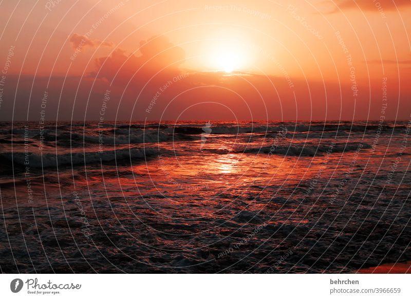 *1900* BÄMM rot Sonne Licht Natur Kontrast Ferien & Urlaub & Reisen Landschaft Freiheit Ferne Abenteuer Ausflug Tourismus Himmel Wolken Horizont Sommer