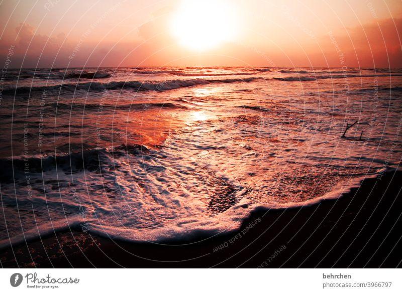 erwachen rot Sonne Licht Natur Kontrast Ferien & Urlaub & Reisen Landschaft Freiheit Ferne Abenteuer Ausflug Tourismus Himmel Küste träumen Hoffnung