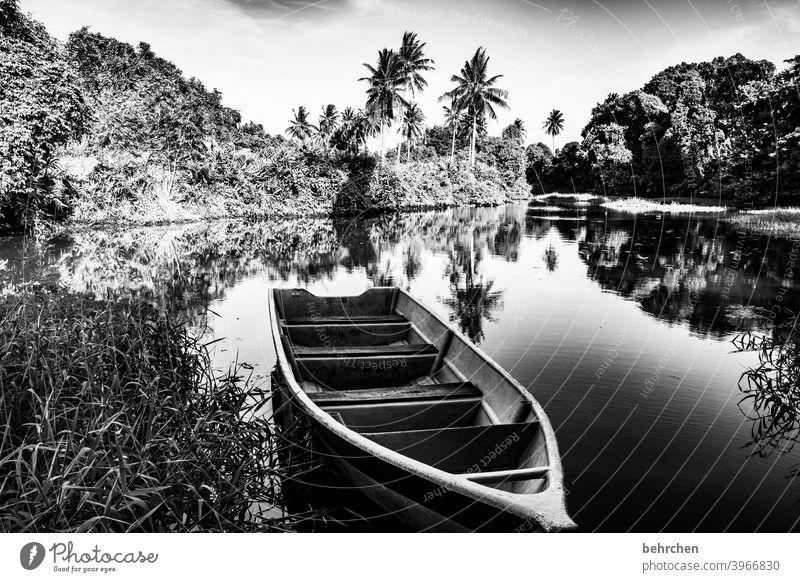 in der ruhe baden Schatten Schwarzweißfoto Sonnenlicht Kontrast Licht Tag Reflexion & Spiegelung Idylle Farbfoto Außenaufnahme Wasserfahrzeug Fernweh Malaysia