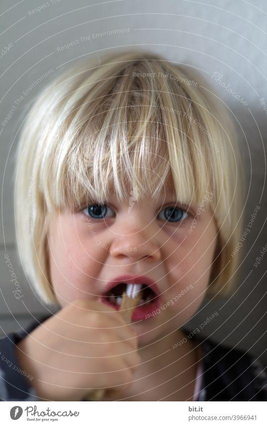 Pähnchen zutzen Kind Kindheit Kindererziehung Kindergarten Mädchen klein Kleinkind Porträt putzen Zähne Zahnbürste Zahnarzt Zahnmedizin Zahnpflege hygiene
