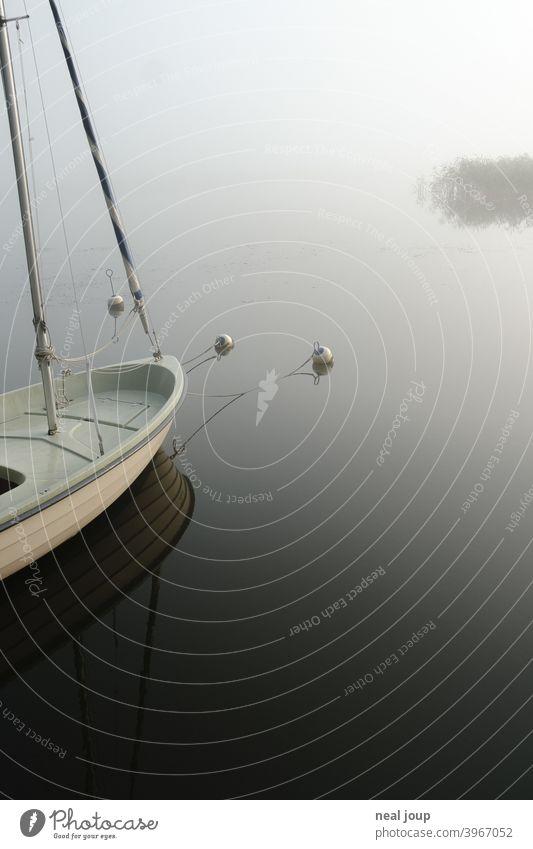 Bug eines Segelboots auf spiegelglattem See im Morgennebel Ruhe Natur Idylle Poesie Stimmung Harmonie Wasser Wasseroberfläche Spiegelung Reflektion früh morgens