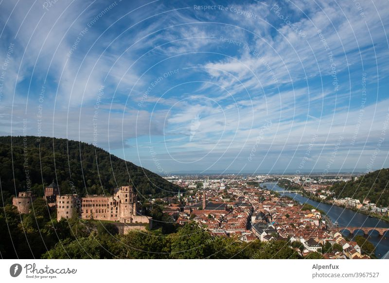 Neckarblick Heidelberg Schloss Burg oder Schloss Außenaufnahme Farbfoto Menschenleer Altstadt Architektur Ruine Tag Stadt Mauer Sehenswürdigkeit historisch