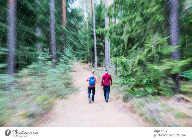 jetzt aber schnell | durch den Wald verzerrt rennen angst Wahrnehmung Männer zwei Männer laufen Läufer Focus